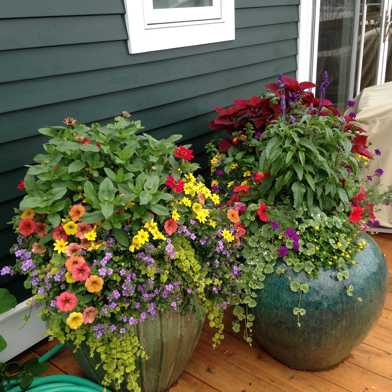 deck floral arrangements
