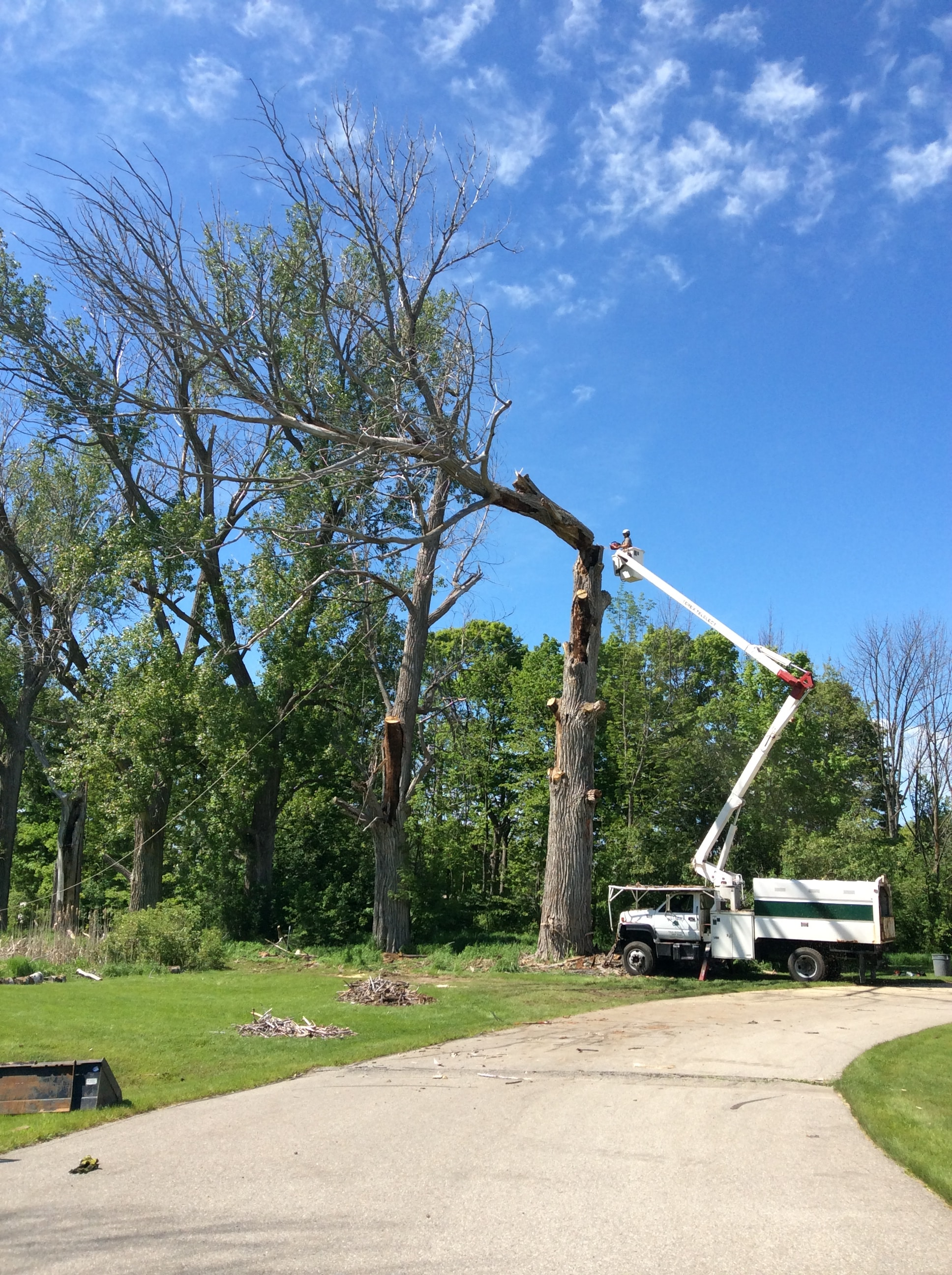 Drost Landscape - tree service experts using a bucket truck