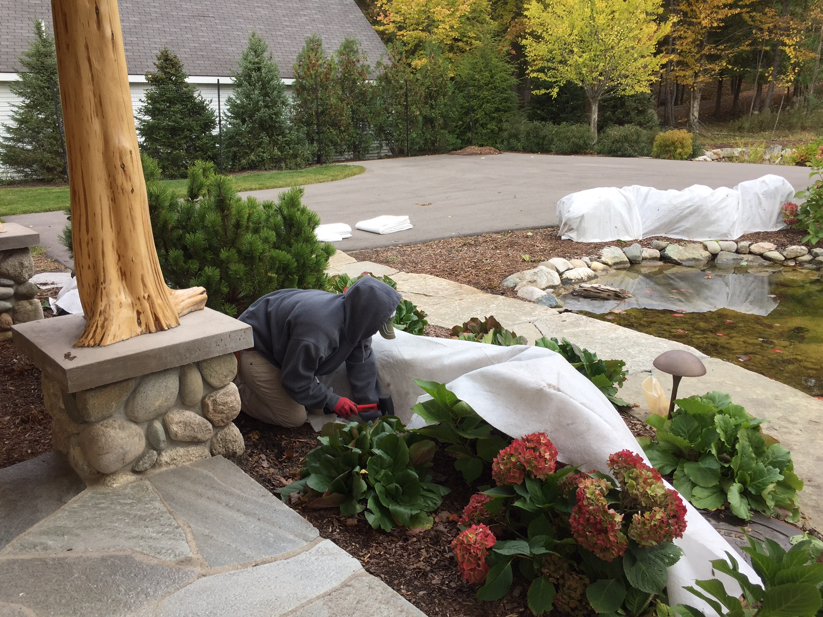 protecting landscape for the season