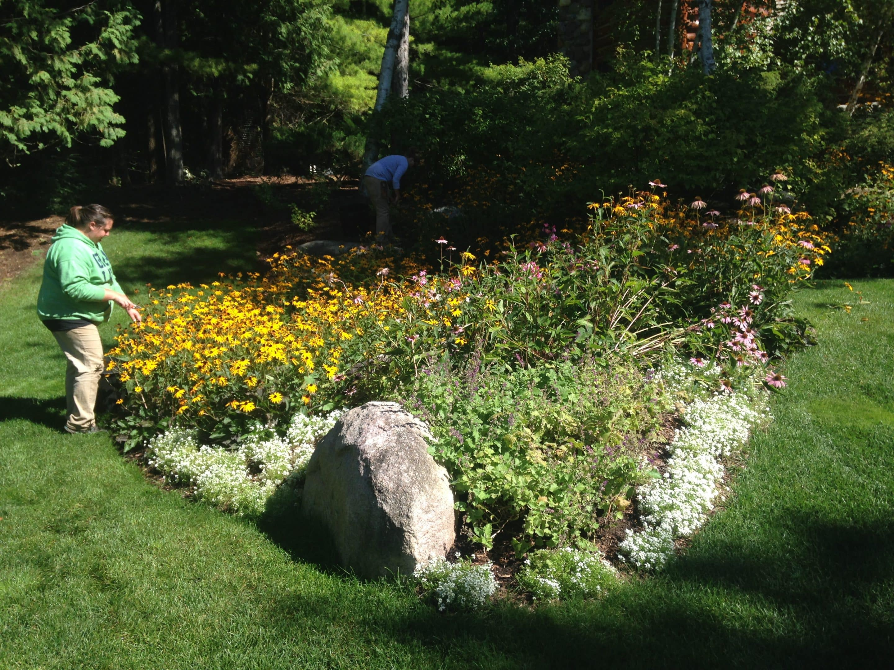 landscape maintenance services Petoskey, MI