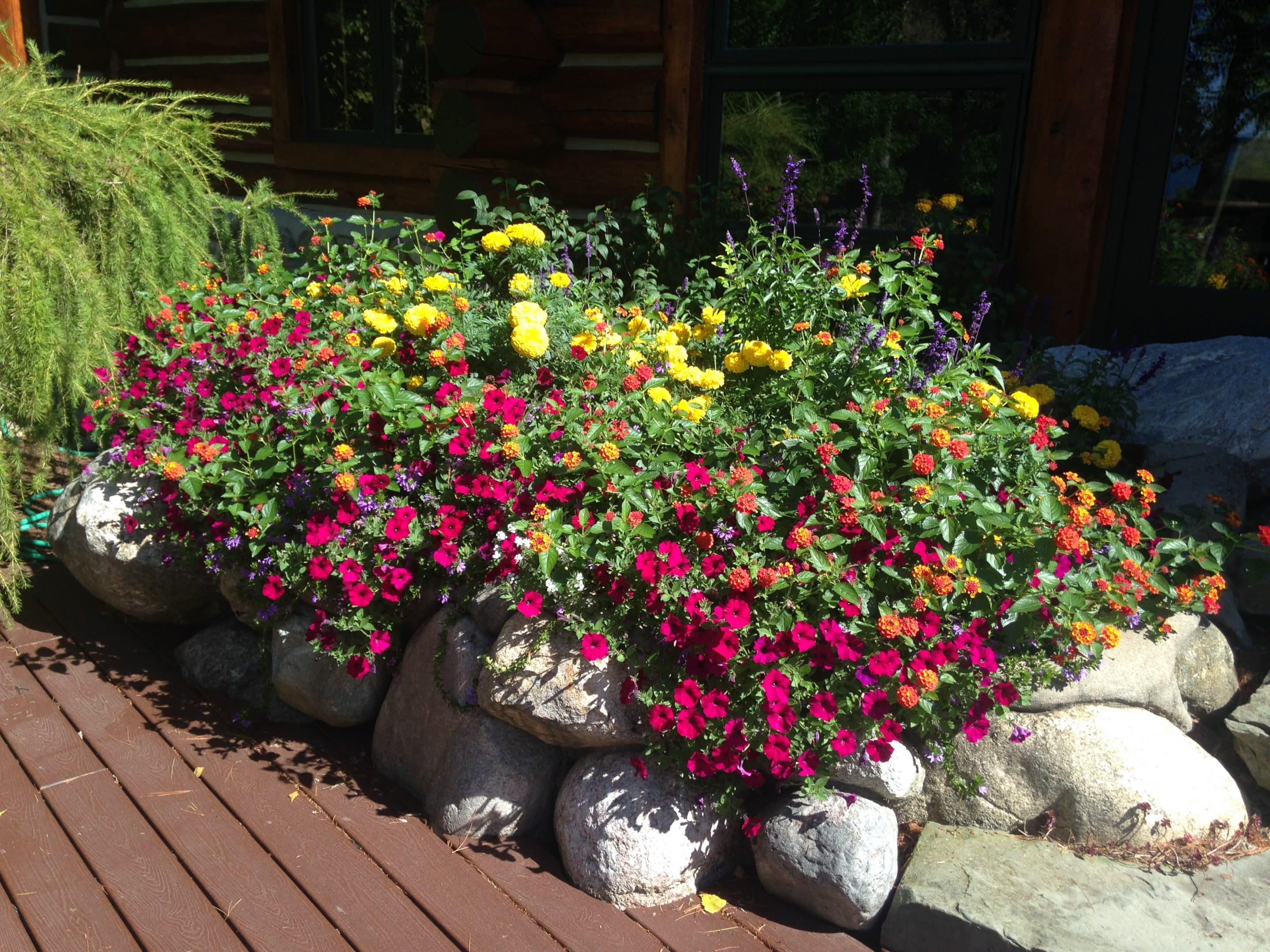raised rock flower bed
