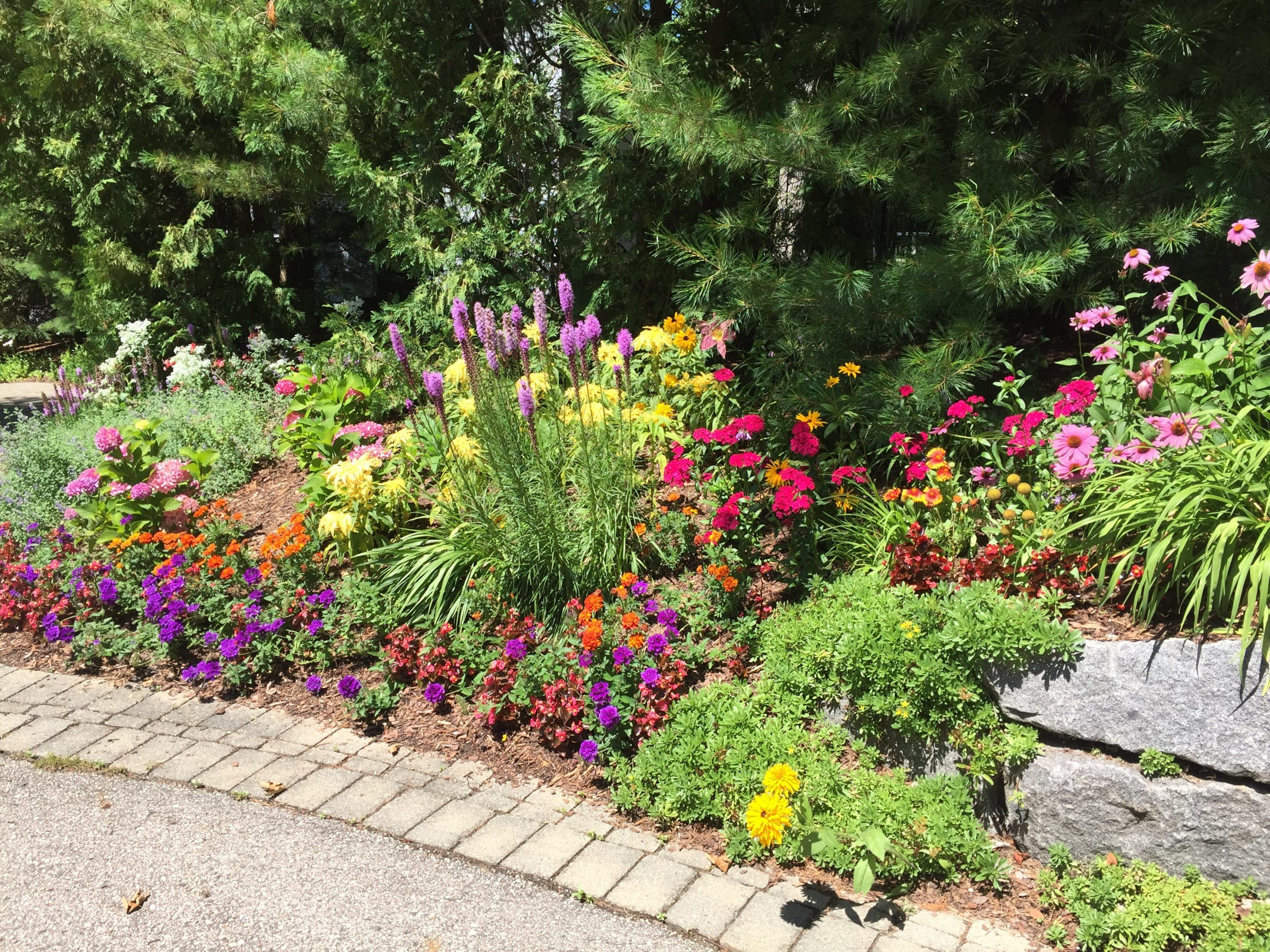 flowers make a driveway more pleasant to drive or walk down