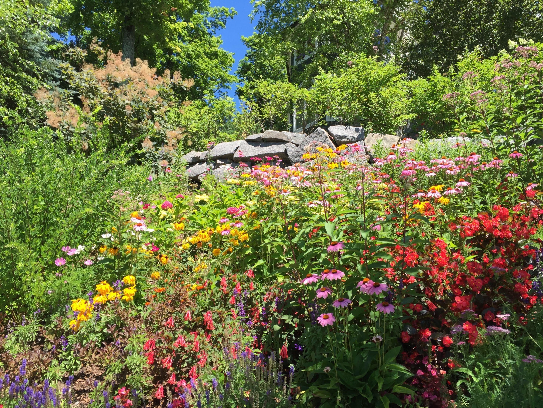 floral paradise