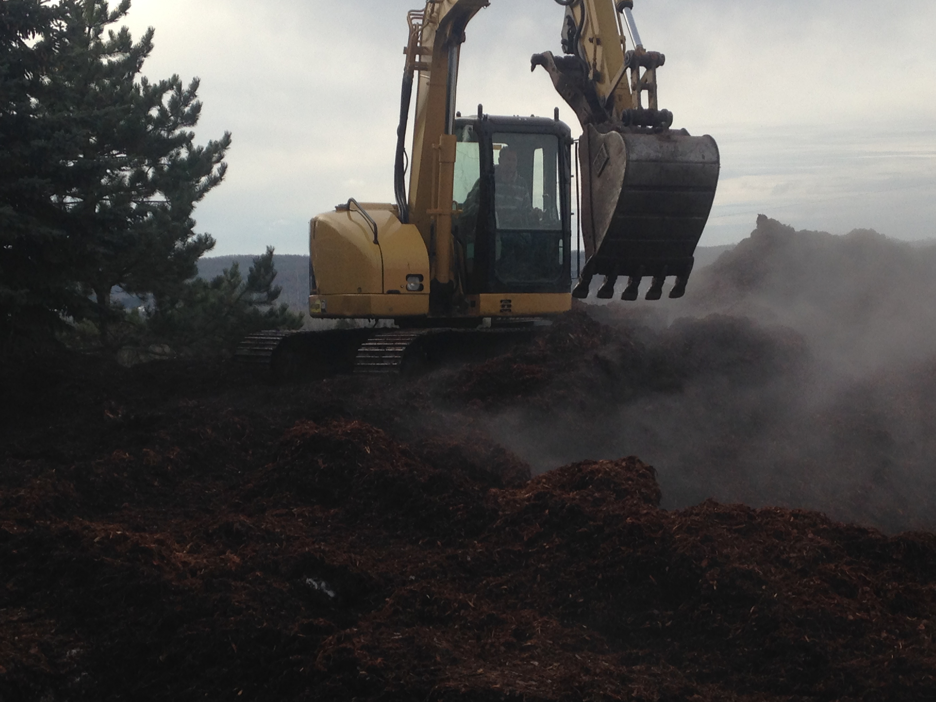 excavator with mulch