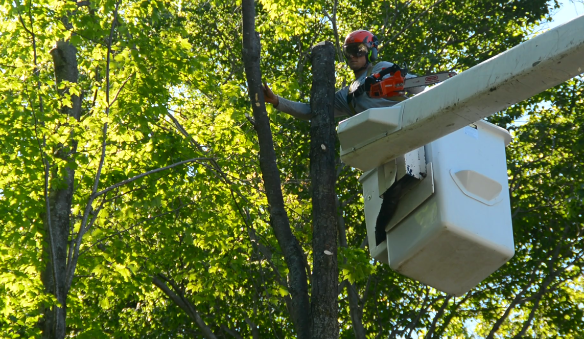 Tree service - Drost Landscape - Bucket truck and chainsaw